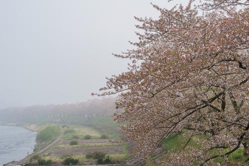 200503-006.jpg
