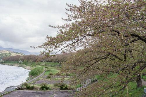 200505-006.jpg